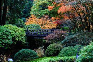 Portland's Beautiful Gardens