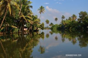 Alleppey – Cruise on the Famous Backwaters of Kerala