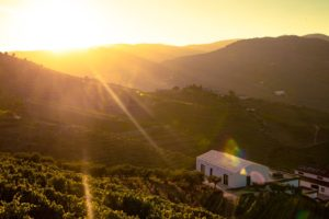 The Ultimate Travel Guide to Douro Valley, Portugal
